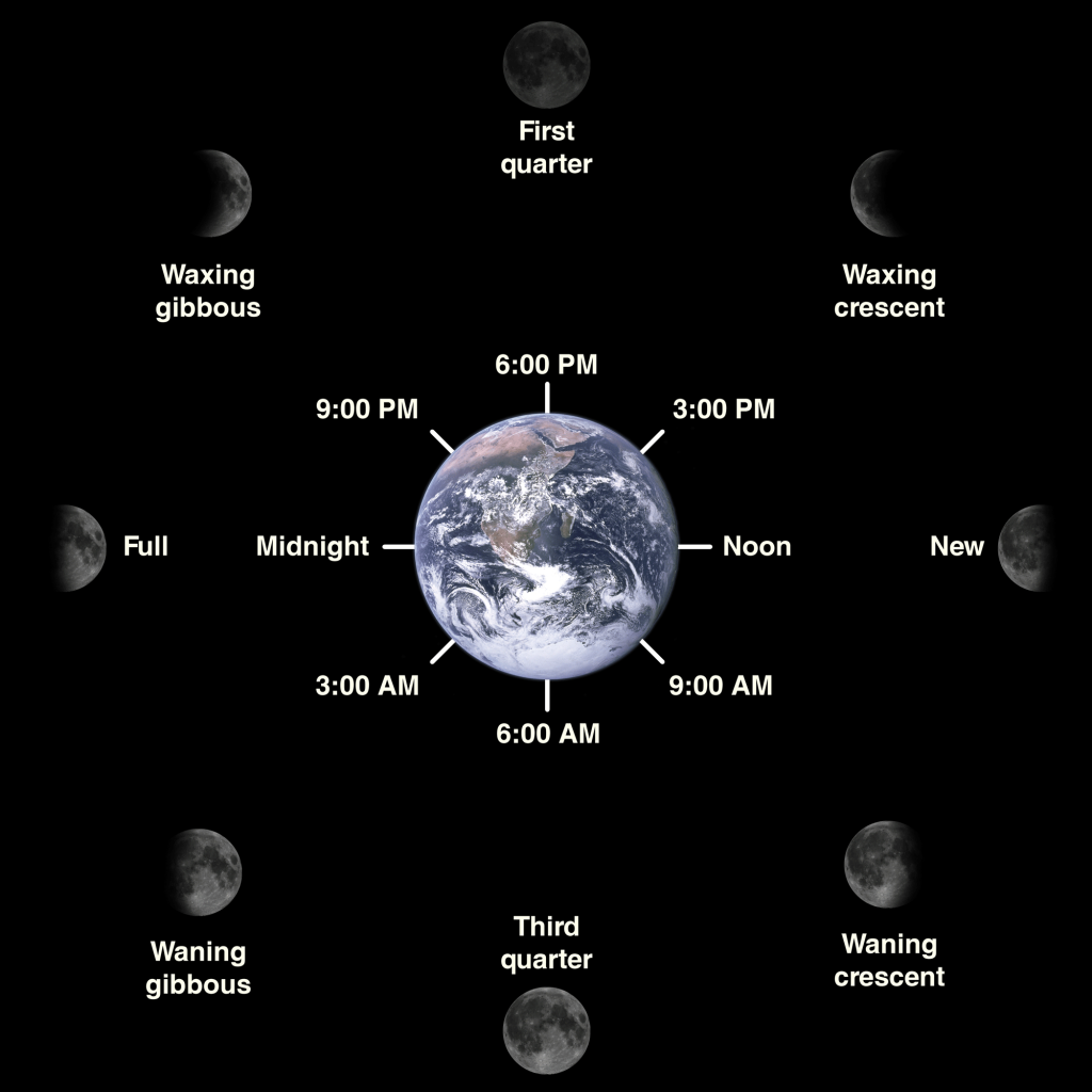 Outstanding Do Lunar Phases Actually Affect The Bite Wiring Digital Resources Instshebarightsorg