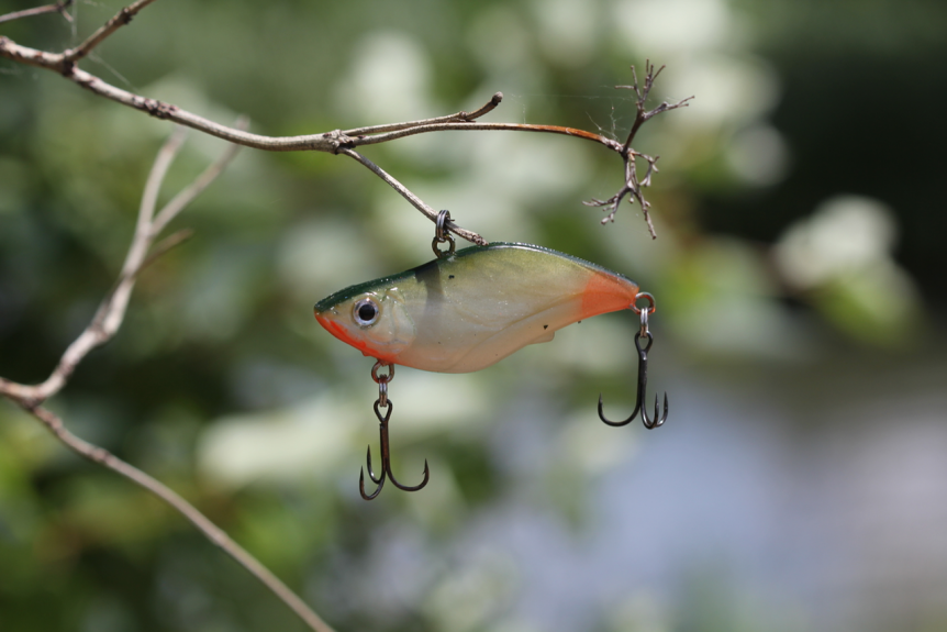 Lipless Crankbaits: When, Where and How To Fish Them