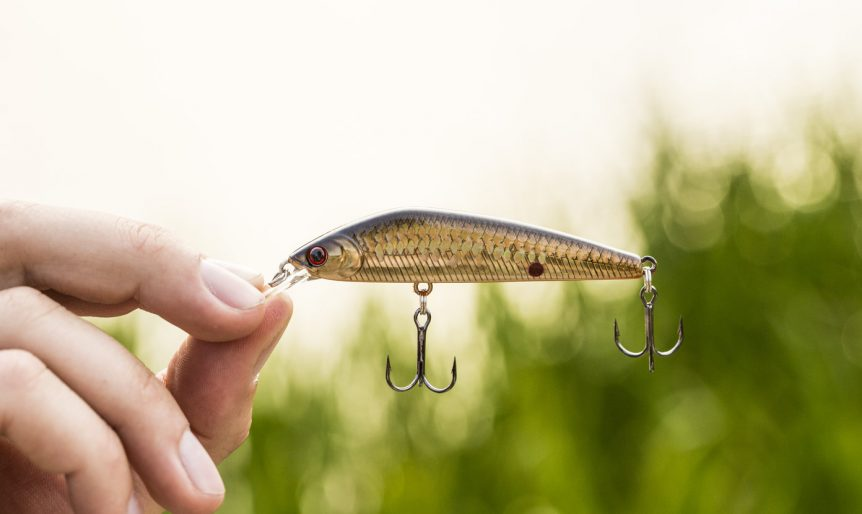 essential bass fishing lures