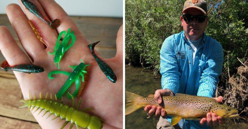 Soft Plastics For Trout Fishing
