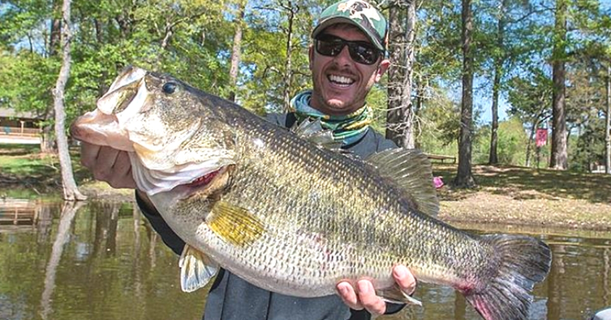 The 5 Best Bass Fishing Lakes In Texas