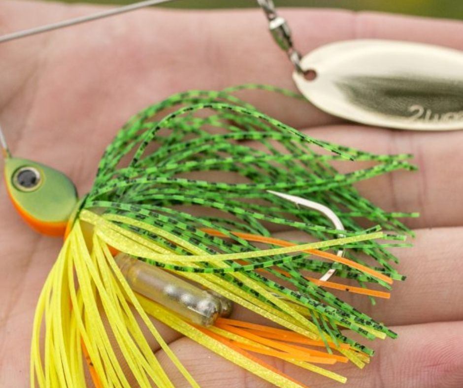 Late Fall Fishing - Spinnerbait