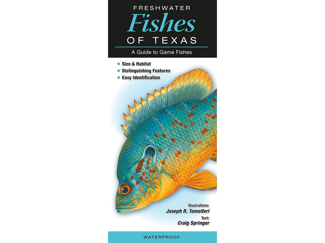 Freshwater Fishes of Texas Guide