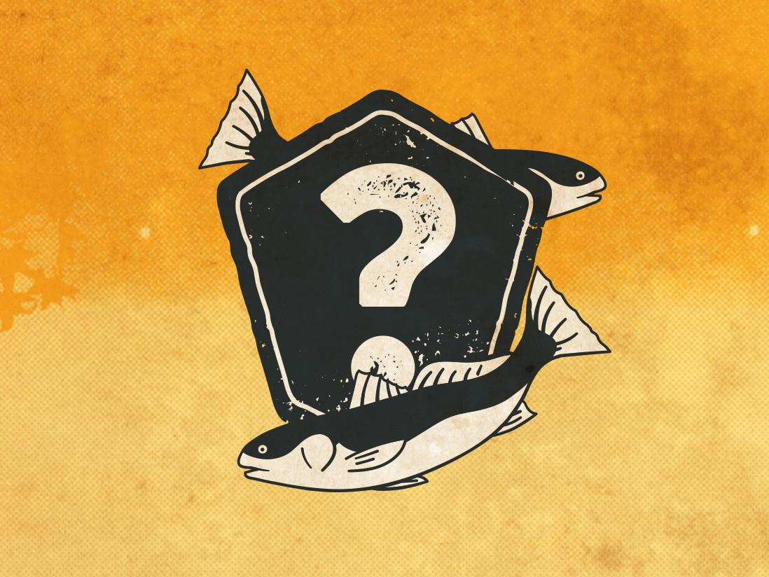 December Mystery Saltwater Bundle